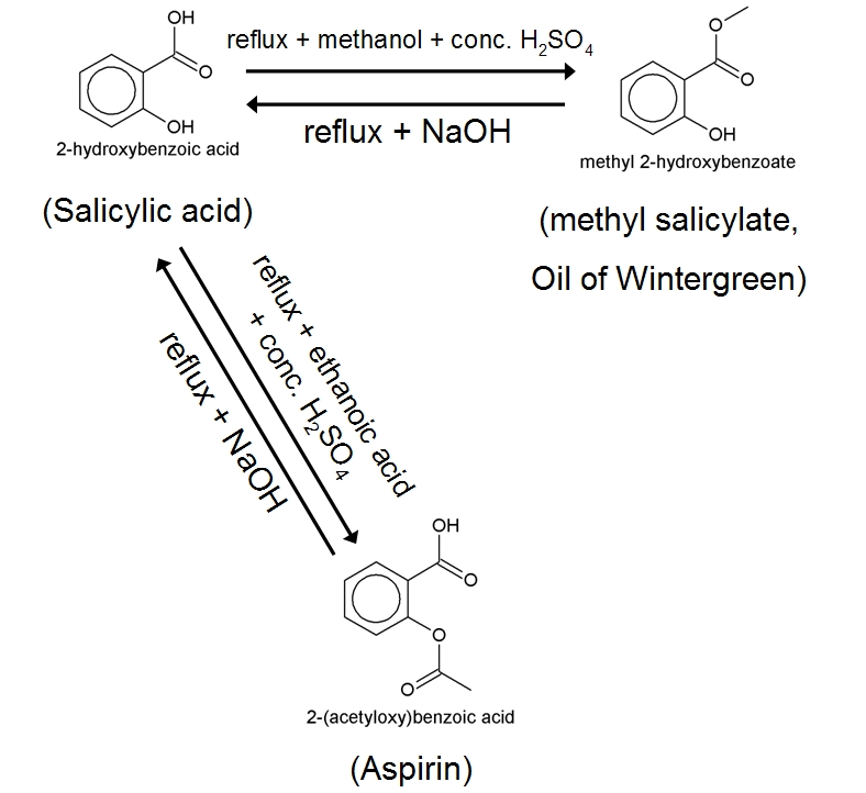 synthesis of salicylic acid from wintergreen oil lab report