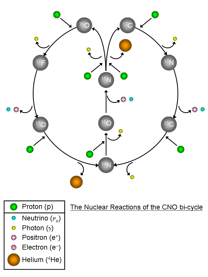 Nuclear cno cycle ccuart Images