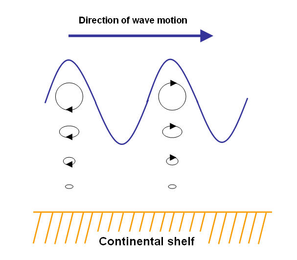 water wave orbits