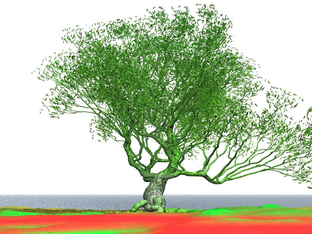 Willow tree pov ray model of willow tree biocorpaavc Image collections