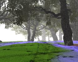 Pov-ray model of trees in a forest