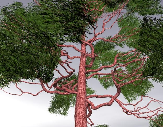 Pov-ray model of a pine