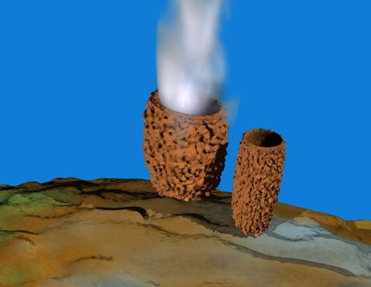 Barrel sponge releasing sperm