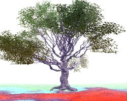 pov-ray model of an oak tree in autumn