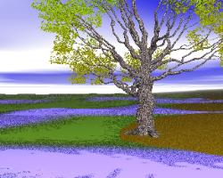 pov-ray model of an oak tree in spring