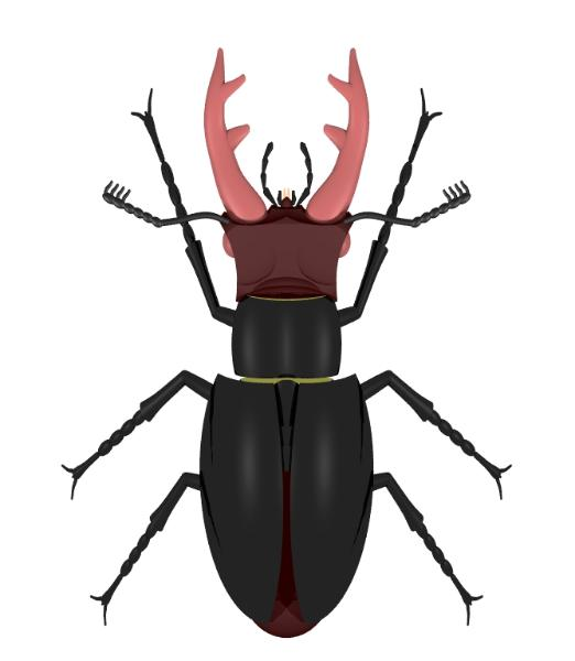 stag beetle, 3D Pov-Ray model